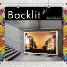 Bâche Backlight 460g