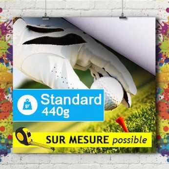 Bâche Standard 440g